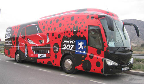 routulacion bus